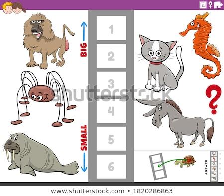 Onderwijs taak groot klein dier soorten Stockfoto © izakowski
