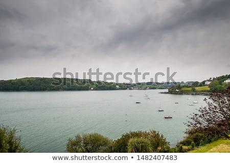 sahne · görmek · manzaralı · gökyüzü · ağaç · deniz - stok fotoğraf © morrbyte