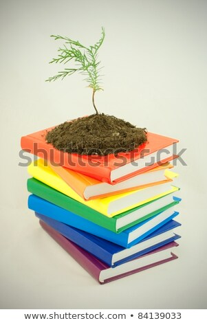 Tree seedling on the stack of colorful books Stock photo © AndreyKr