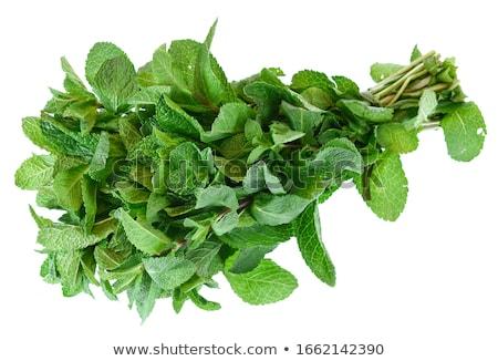 taze · nane · yaprakları · gıda · yaprak - stok fotoğraf © calvste