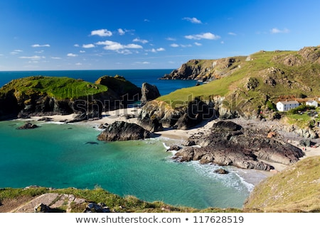 lagarto · ponto · cornualha · Reino · Unido · praia · verão - foto stock © fisfra