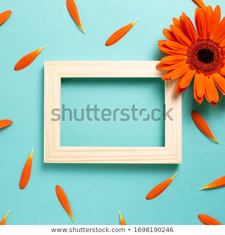 zon · shot · oranje · geneeskunde - stockfoto © boroda