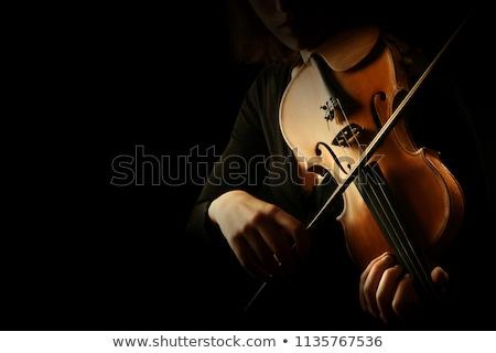 mujer · jugando · violín · azul · notas · musicales · vector - foto stock © pavelmidi