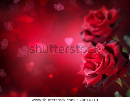 abstract red shiny rose heart Stock photo © pathakdesigner