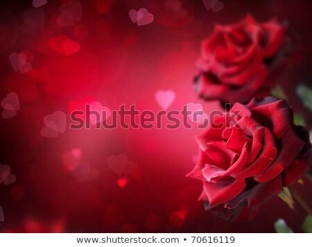 absztrakt · fényes · szív · textúra · piros · hullám - stock fotó © pathakdesigner