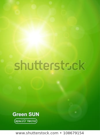 bright sun burst green background stock photo © antkevyv