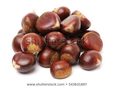 Chestnut pile Stock photo © stevanovicigor