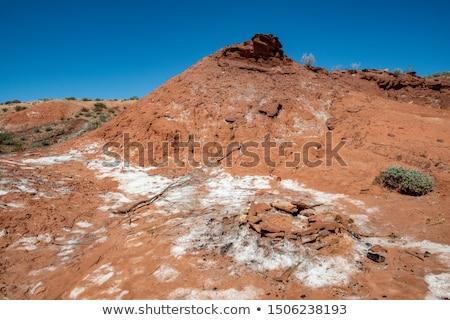 Anel salgado rocha ouro diamantes Foto stock © eldadcarin