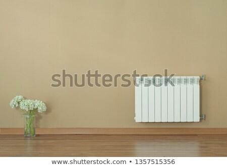Parede aquecedor natal boné ícone meias Foto stock © zzve