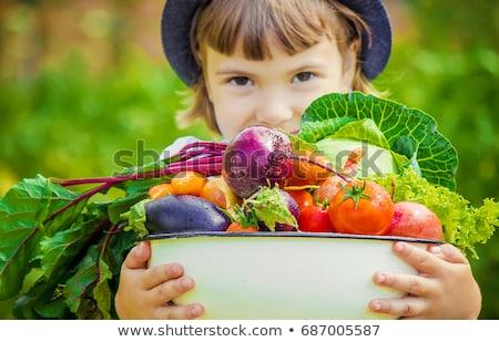 少女 庭園 プレート 野菜 幸せ 夏 ストックフォト © travnikovstudio