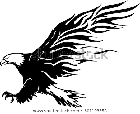 Bald Eagle Side View Stock photo © ca2hill