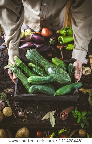 Stock photo: round zucchini with vegetables
