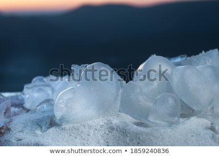 Heart of winter Stock photo © MyosotisRock