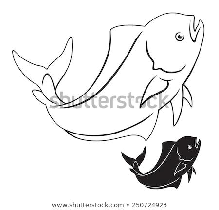Dorado Mahi-Mahi fish hooked with fishing line Stock photo © lunamarina