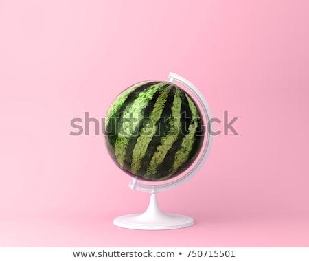Pop Art World Globes Stock photo © VectaRay