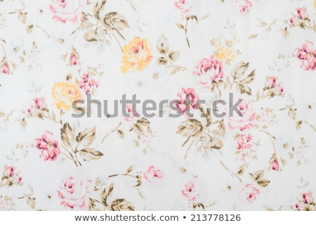 Old-fashioned wallpaper Stock photo © ongap