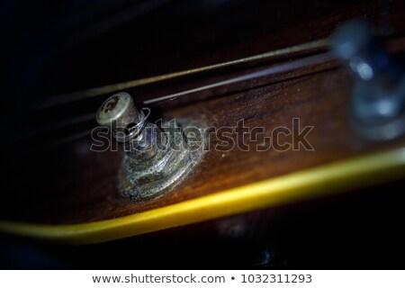 красивой аннотация фотография классический акустический Сток-фото © keneaster1