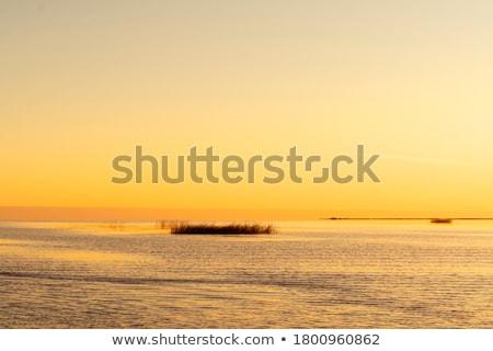 Kristály tiszta tenger idilli trópusi tengerpart korallzátony Stock fotó © kasto