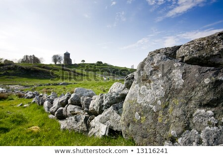 Plain grassland with stone wall Stock photo © olandsfokus