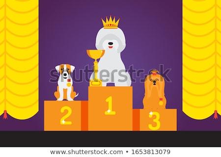 Dog on podium Stock photo © adrenalina