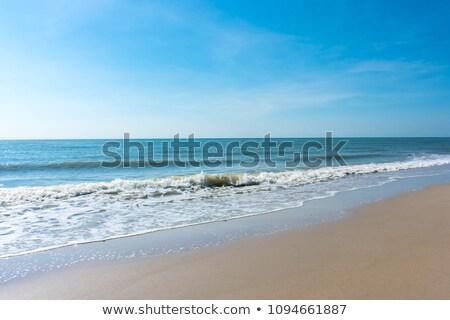 Higgadt part napos idő sziget külső bankok Stock fotó © wildnerdpix