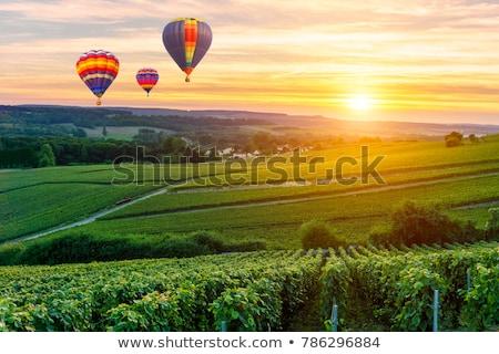 Verde panorama palloncini nubi montagna fiore Foto d'archivio © WaD