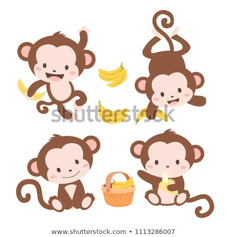 rajz · majom · integet · illusztráció · fogak · mosolyog - stock fotó © bluering