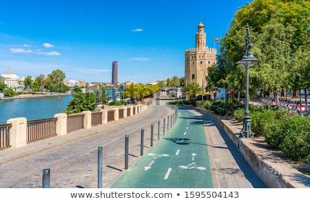 torre de sevilla in seville andalusia spain stock photo © lunamarina