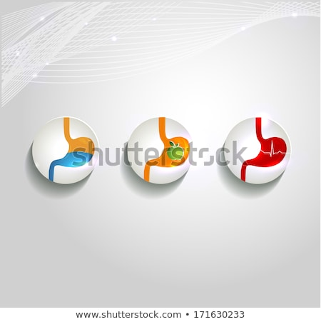 human stomach beautiful symbol collection stock photo © tefi