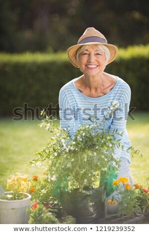 kıdemli · adam · yakacak · odun · bahçe - stok fotoğraf © wavebreak_media