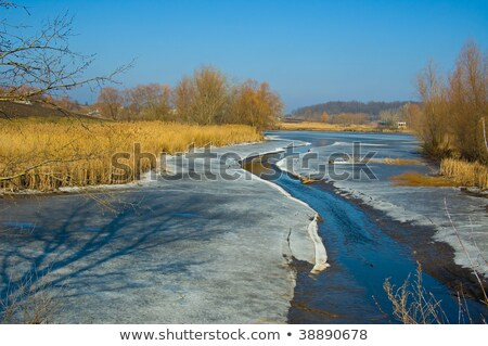 Spring Brook Thaw Stock photo © FOTOYOU