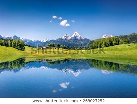 Idilli Alpok panorámakép kilátás égbolt tájkép Stock fotó © xbrchx