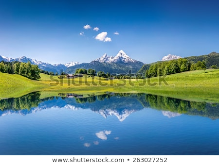 idyllic austrian alps panoramic view stock photo © xbrchx