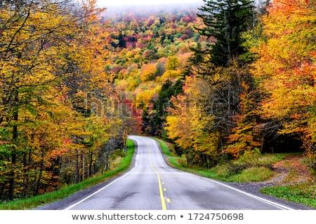 Autoroute ouest stylisé pittoresque route montagne Photo stock © tracer