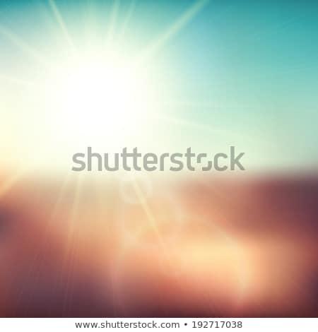シーン ブラウン フィールド 太陽 ストックフォト © sidmay