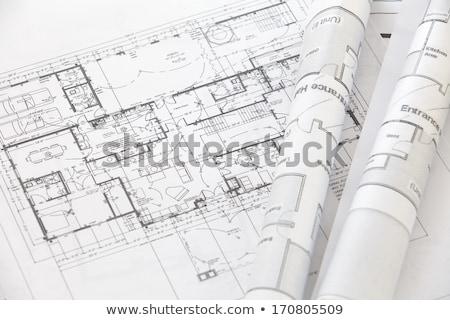 Tervez ház férfi jövő rajz mutat Stock fotó © IS2