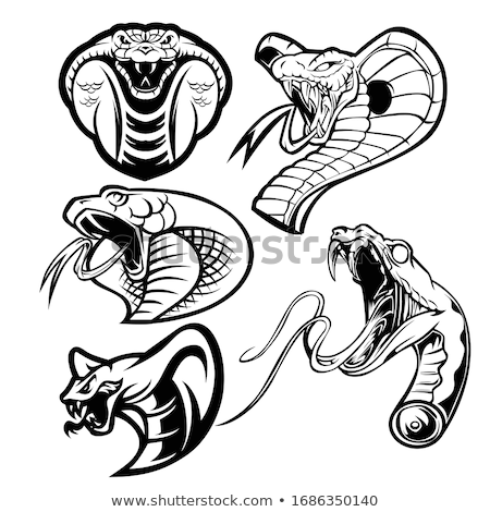 Cobra serpent animaux silhouette design fond Photo stock © Krisdog