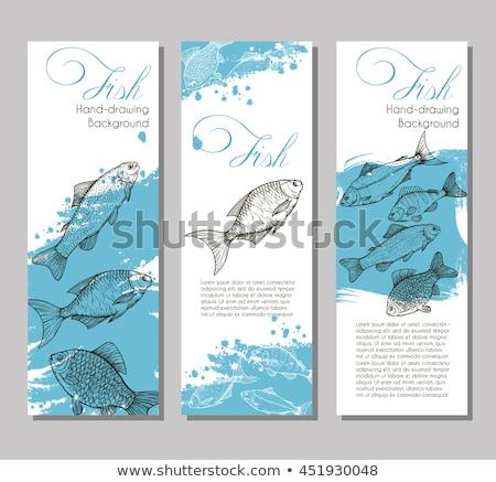 Fruits de mer menu linéaire silhouettes poissons mer Photo stock © robuart