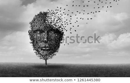 Agy betegség orvosi ötlet betegség memóriazavar Stock fotó © Lightsource