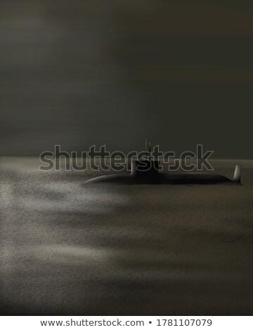 Tengeralattjáró naplemente tenger magas döntés 3d render Stock fotó © oneo