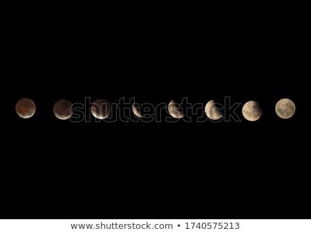 Yarım ay gece logo ikon stilize Stok fotoğraf © blaskorizov