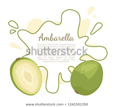 Exótico suculento fruto vetor cartaz texto Foto stock © robuart