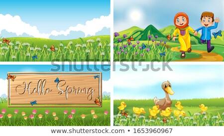 Photo stock: Jardin · scène · quatre · signe · illustration · nature