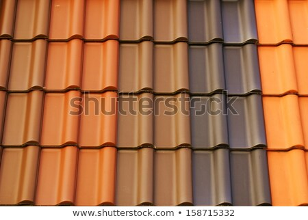 Dome of Roof tile Stock photo © bobkeenan