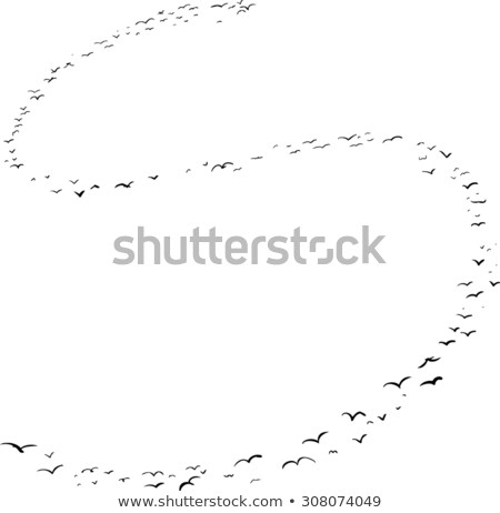 A letter S for swarm Stock photo © colematt