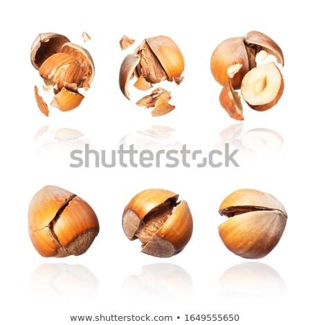 Hazelnoot gebarsten witte schaduw voedsel natuur Stockfoto © restyler