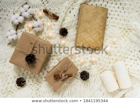 Coton branche lumière couverture chaud haut Photo stock © furmanphoto