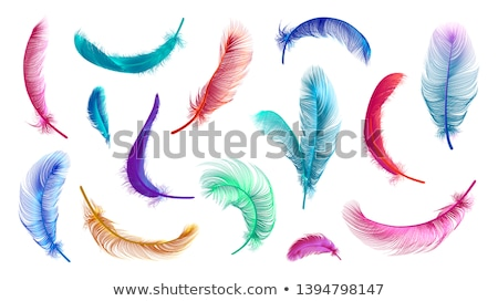 Vector Illustration with Colorful Float Collection Isolated on Transparent Background. Vector Holida Stock photo © articular
