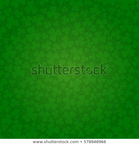 Aziz gün dizayn yonca yaprak beyaz Stok fotoğraf © articular