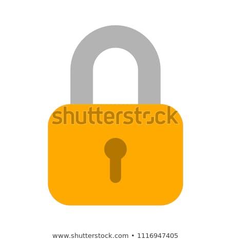 Sluiten hangslot veiligheid bescherming symbool computer Stockfoto © yupiramos
